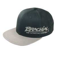 Brachial Snapback Cap Protect black/dark grey