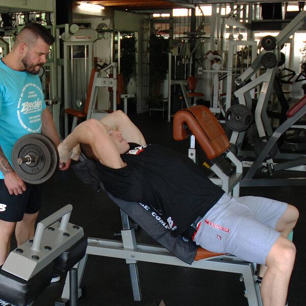 Brachial Short Rude Grau Grey Bodybuilding Fitness